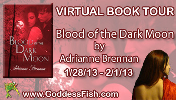 1_30 VBT Blood of the Dark Moon Banner copy