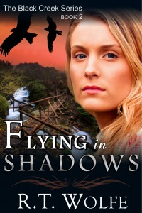 Cover_Flying In Shadows
