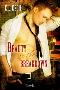 5_16 ELE_BeautyInTheBreakdown_coverin