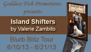 BBT Island Shifters Banner