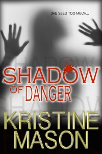 6_5 Cover_ShadowOfDanger