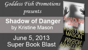 6_5 SBB Shadow of Danger Banner