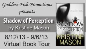 9_2 VBT Shadow of Perception Banner