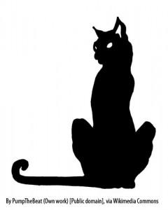 sitting cat copy