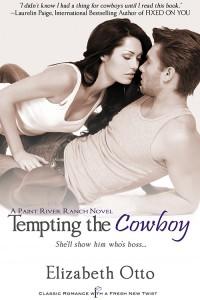11_12 Tempting the Cowboy-500