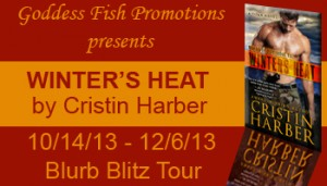 BBT Winters Heat Banner copy