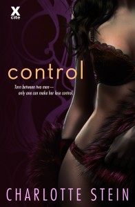 1_13 control book cover
