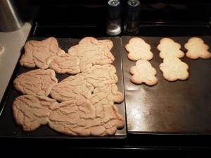 2_24 ugly cookies