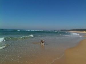 2_3 beach