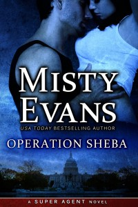 5_20 misty OS Book Cover