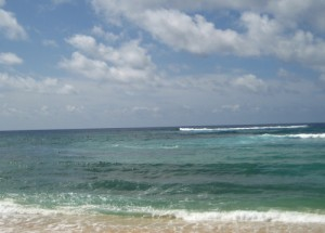 morell HawaiiBeach (2)