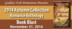 11_21 MBB_2014AutumnCollection_Banner