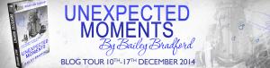 12_15 BaileyBradford_UnexpectedMoments_BlogTour_WebBanner_final