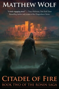 MEDIA KIT CoverArt_Citadel_ebook2