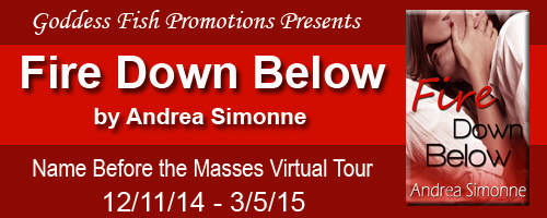 3_5 NBTM Fire Down Below Tour Banner copy