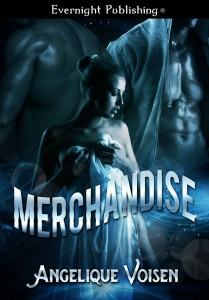 Merchandise-EvernightPublishing-JayAheer2015-finalCover