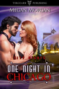 One_Night_in_Chicago