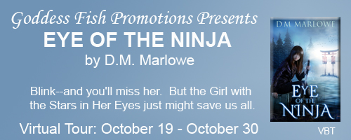 VBT_TourBanner_TheEyeOfTheNinja copy