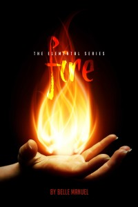 MediaKit_BookCover_Fire