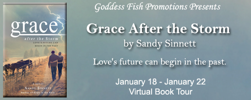 VBT_GraceAfterTheStorm_Banner copy