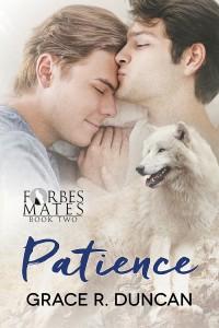 3_8 PatienceFS