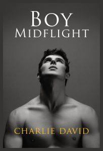7_14 boy midflight book cover