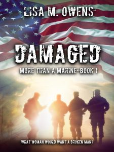 9_1 Damaged Ebook Cover