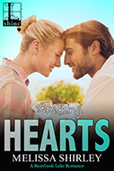 MediaKit_BookCover_Breaking Hearts