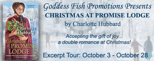 excerpt_tourbanner_christmasatpromiselodge