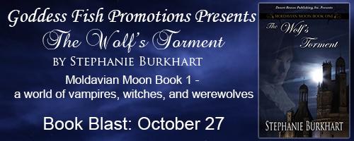 mbb_tourbanner_thewolfstorment