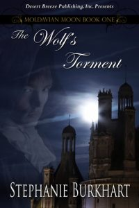 mediakit_bookcover_thewolfstorment
