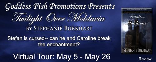 review_tourbanner_twilightovermoldavia-copy