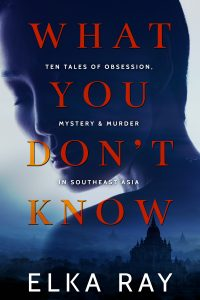 mediakit_bookcover_whatyoudontknow
